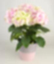 6in Hydrangea in pink urban tin.jpg