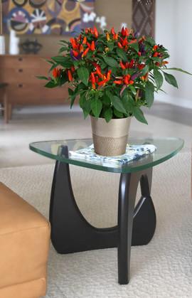 Ornamental Pepper Harbor Tin-.jpg
