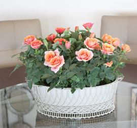 Mini rose woven wire basket.jpg