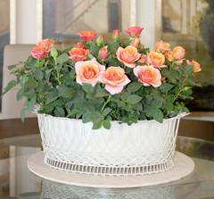 Mini Rose wire basket.jpg