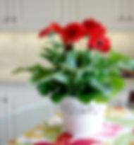 Gerbera ceramic.jpg