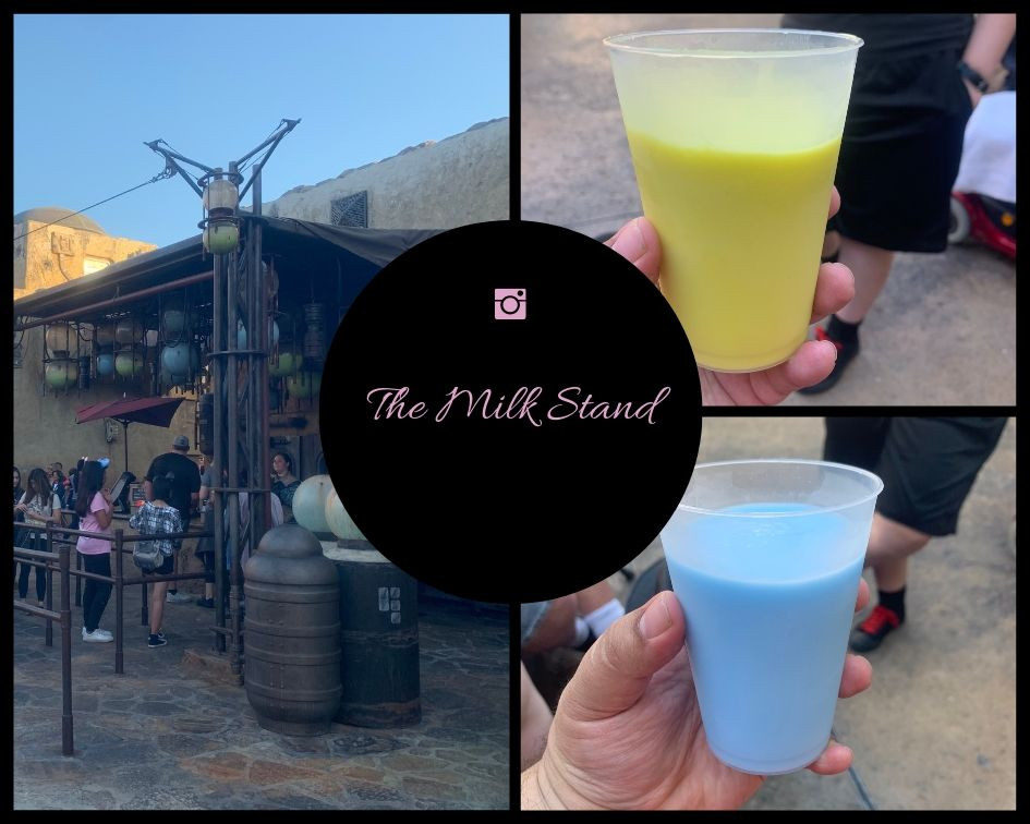 Green and Blue Milk from the Milk Stand travel tips Galaxy's Edge