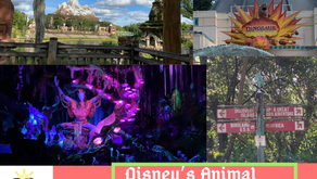 Virtually Experience the Attractions at Disney's Animal Kingdom