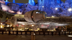 Disabled Disney's Experience of Millennium Falcon Smuggler's Run