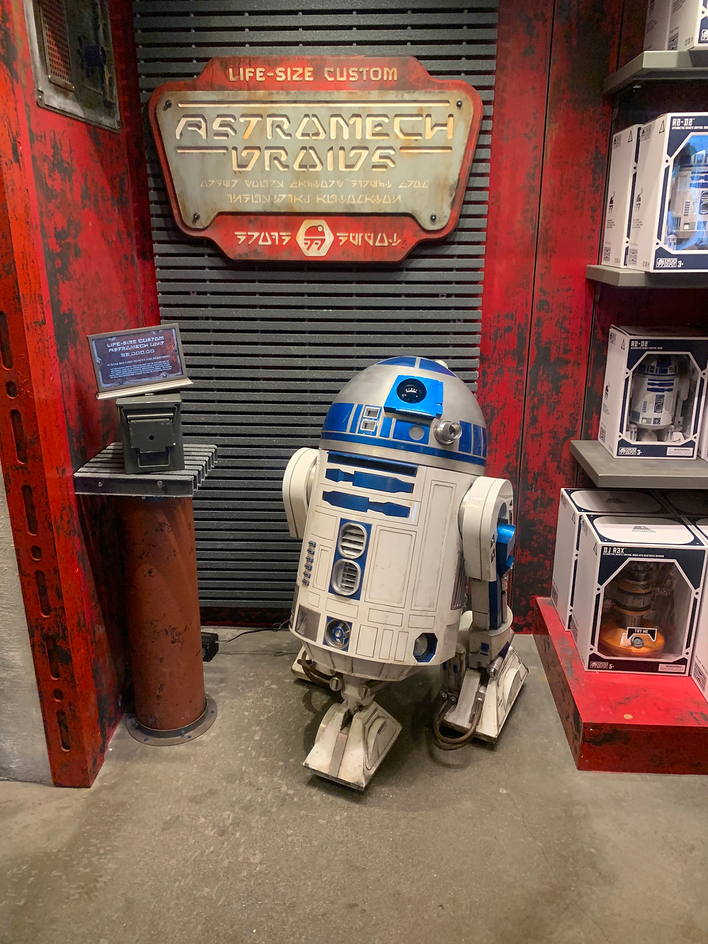 Life size version of R2D2 from Star Wars. Blue, silver and white astromech droid