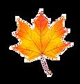 Fal Leaf