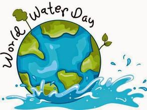 Water Awareness Day