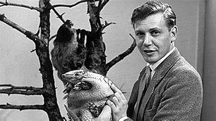 Sir David Attenborough  Celebrating the life and achievements of his great personality