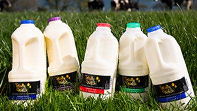 Totally Welsh Milk 2ltr Skimmed