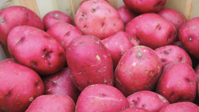 Red Rooster Potatoes (per kg)
