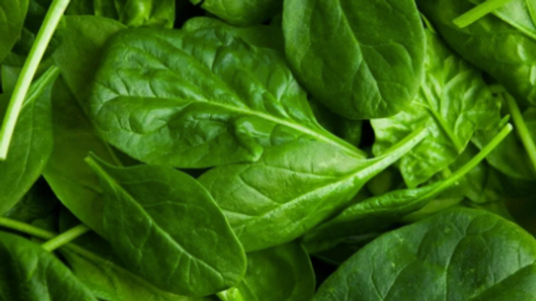 Spinach (per pack)