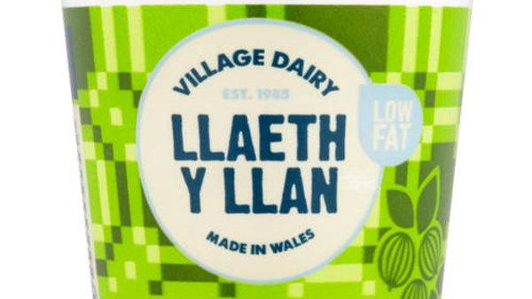 Llaeth y Llan Yoghurts Gooseberry (each)