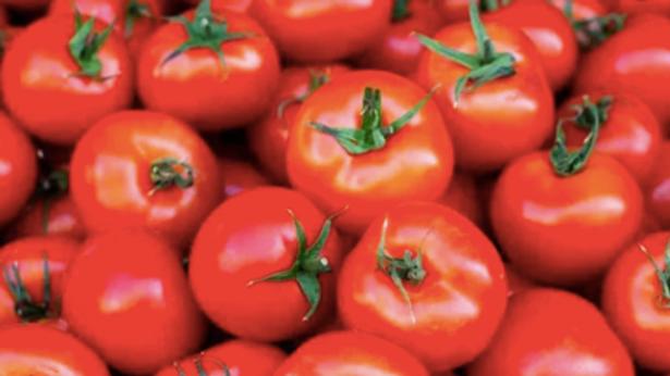 Salad Tomatoes (per kg)