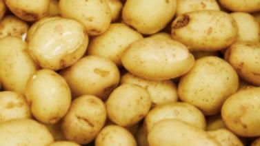New potatoes (per 500g)