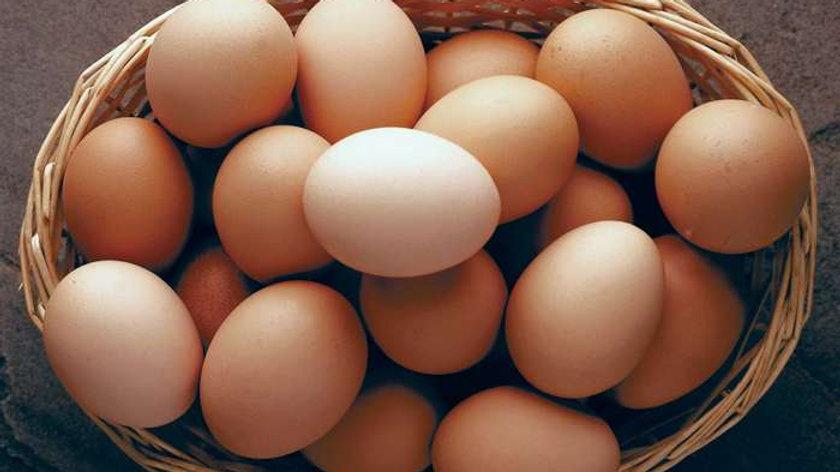 Welsh Hens Eggs (6)