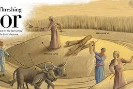Ancient Threshing Floor