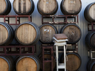 Israeli Wine - Part 2 - The Modern Resurgence of Wine Making in Israel