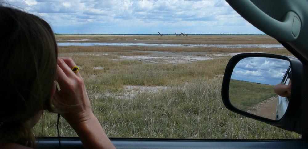 Etosha Namibie safari en 4x4