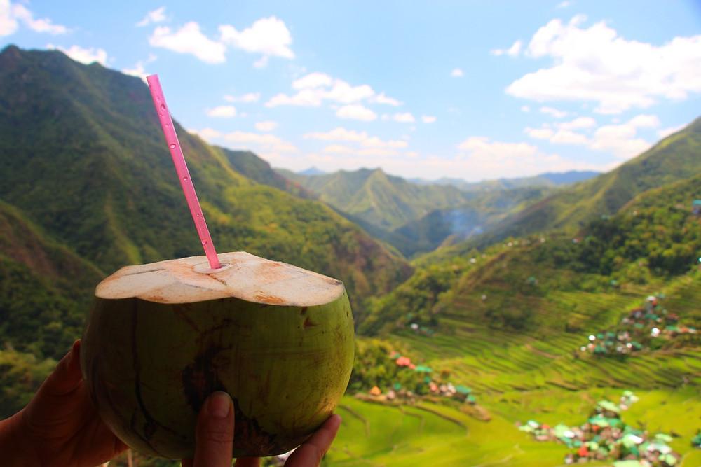 noix de coco luzon philippines