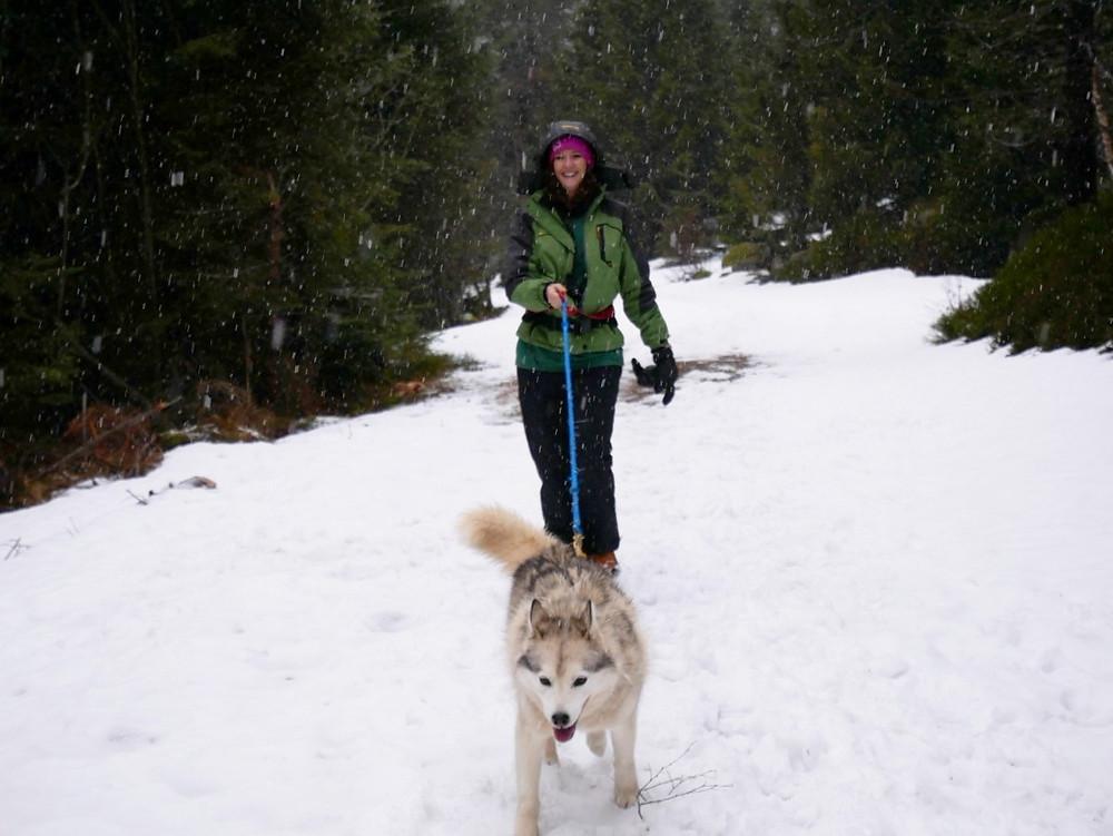 Canirando dans la neige