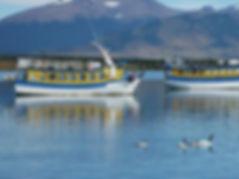 PUERTO NATALES CHILI.jpg