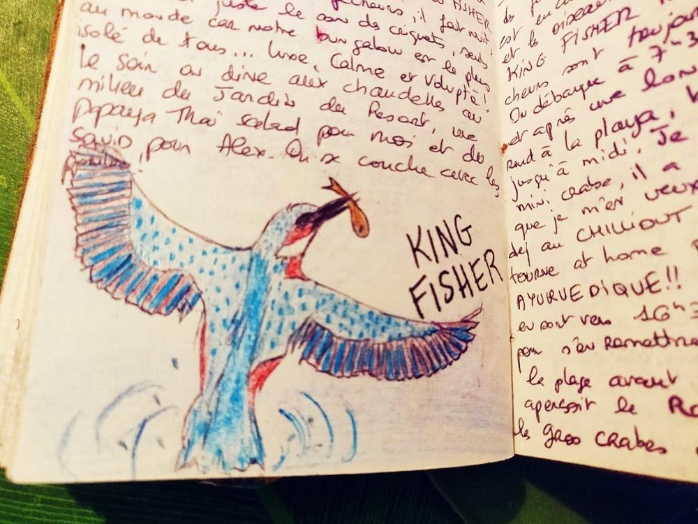 carnet de voyage king fisher