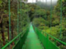 Voyage Costa Rica monte Verde