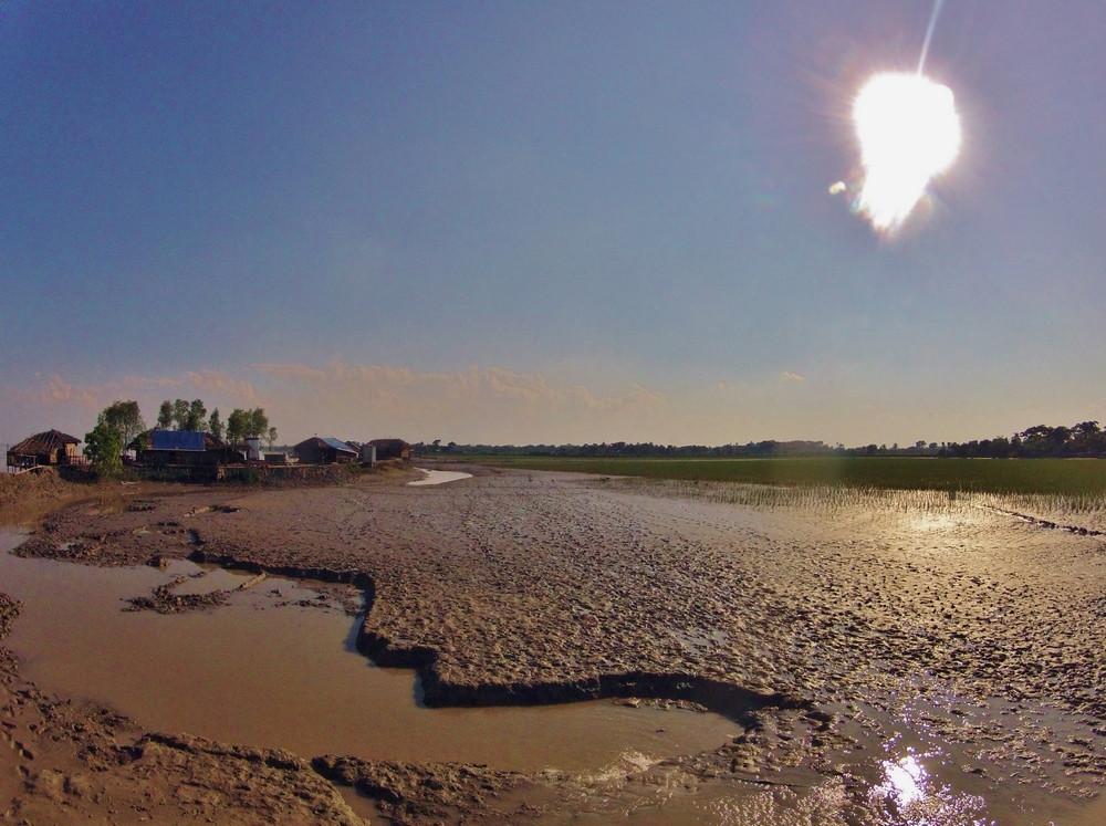 paysage Sundarbans Bangladesh