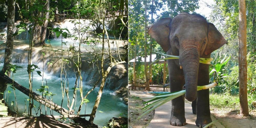 Elephants chutes Tad Saé