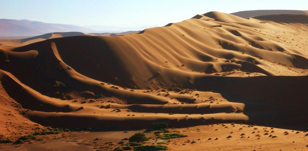 vue depuis dune 45