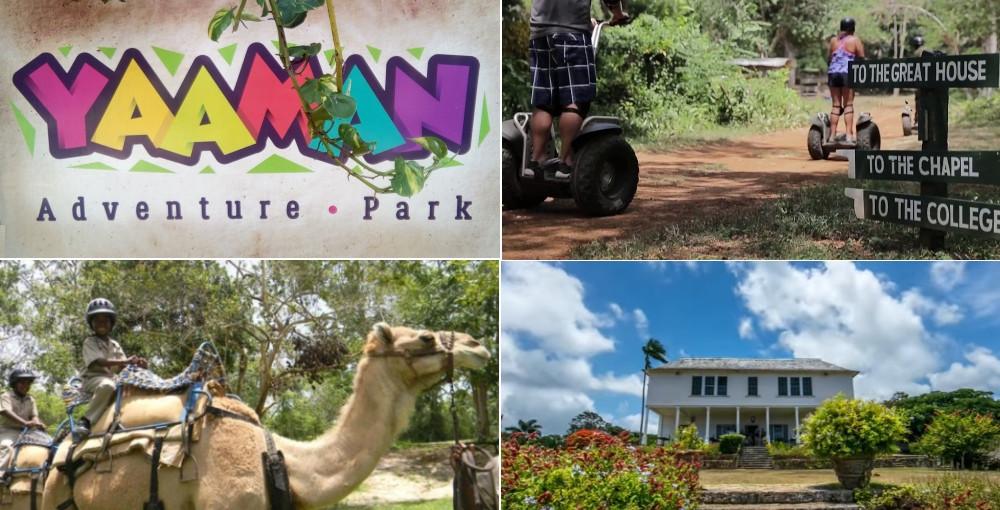 Yaaman park Ocho Rios
