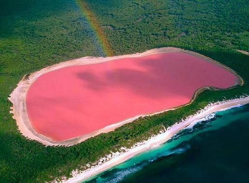 Le Lac Rose Hillier de Middle Island en Australie