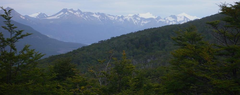 Parc National de la Terre de Feu Ushuaia randonnée