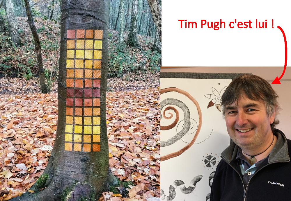 Tim Pugh artiste