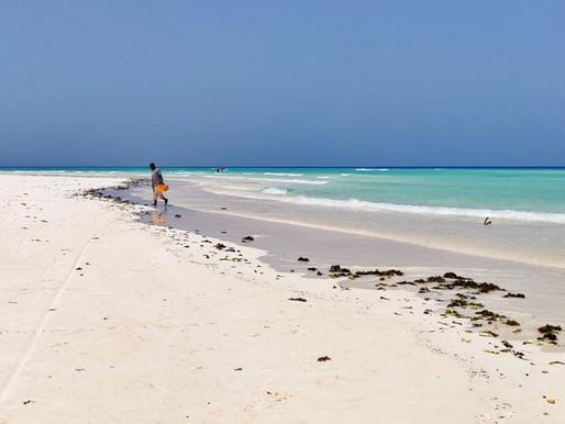 Matemwe à Zanzibar
