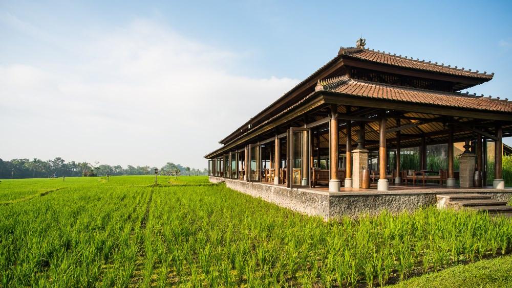 Restaurant vila de luxe dans les rizières d'ubud