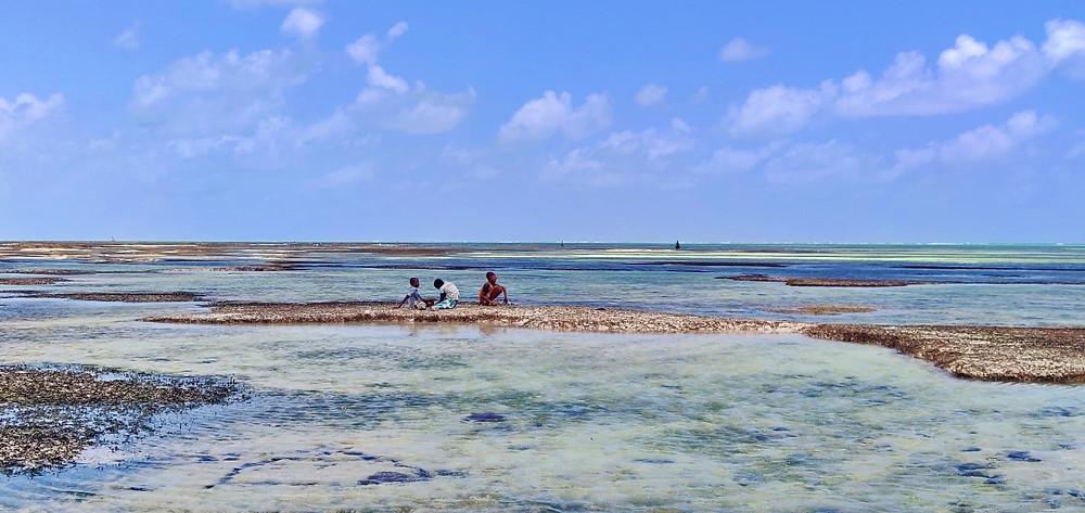 Jambiani plage algues