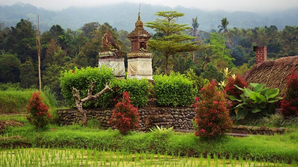 Temple d'eau Rizières Jatiluwih Bali