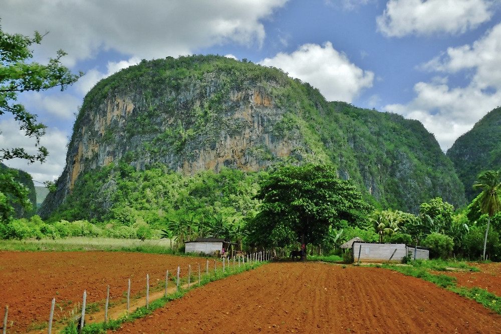 Mogotes Vallée de Viñales de Cuba