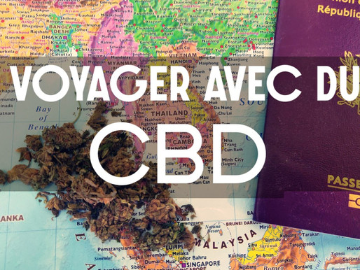 Le CBD en voyage : Législation dans le Monde