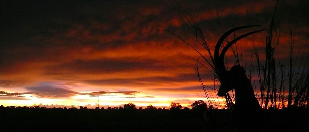 coucher de soleil namibie kavango