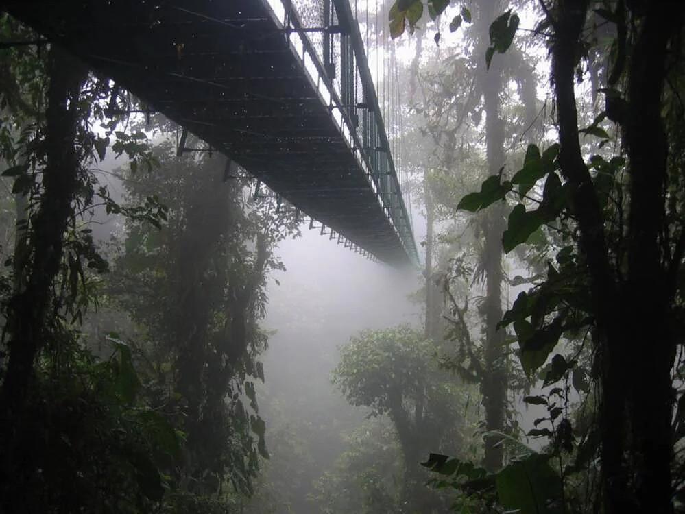 ponts suspendus costa rica