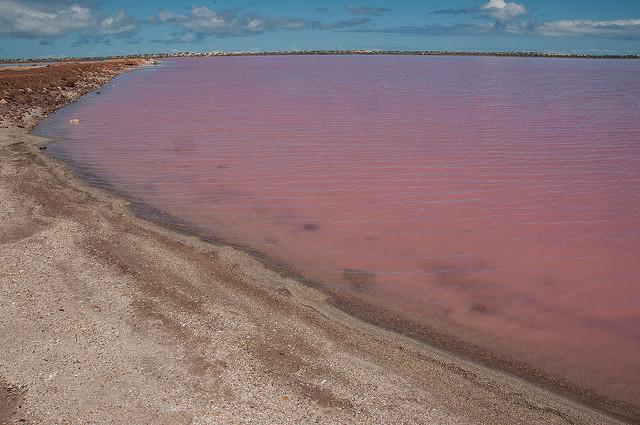 lac rose Hillier australie