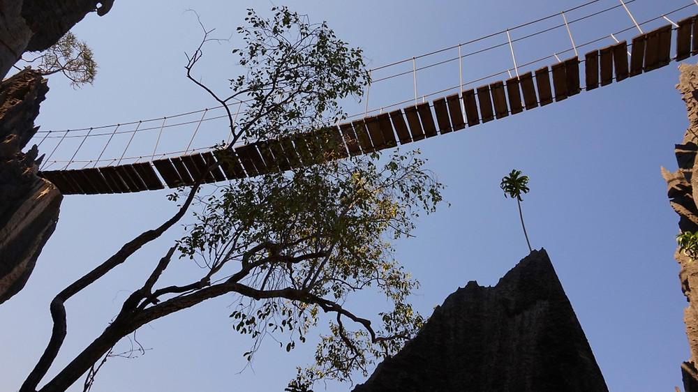 Pont suspendu Tsingy de Bemahara