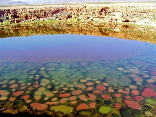 Les marais salants multicolores de Socotra au Yemen