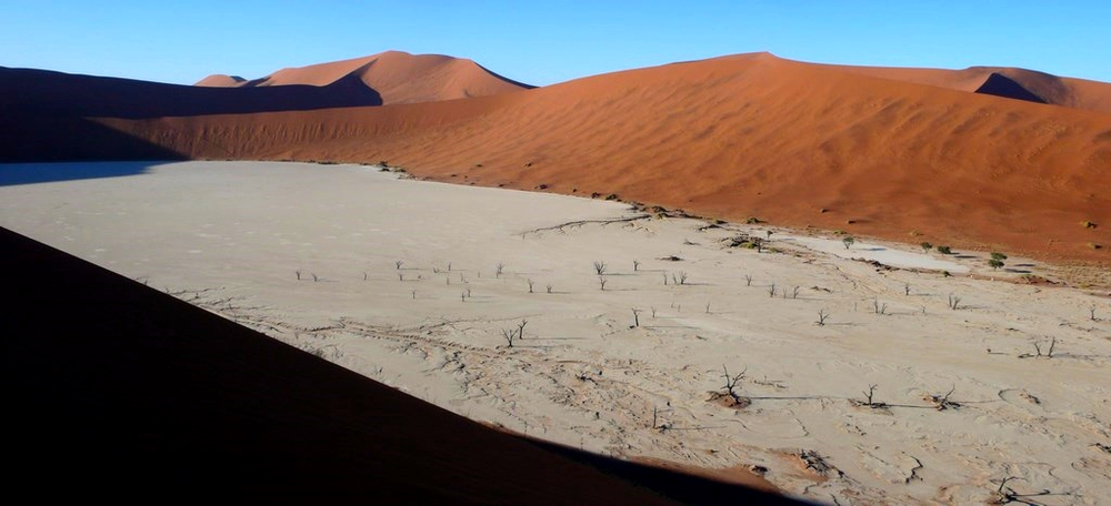 dune de sossusvlei vue dead vlei