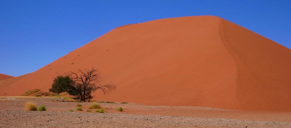 dune 45 sossusvlei