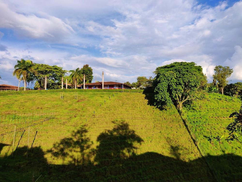 Colline Alcala Colombie