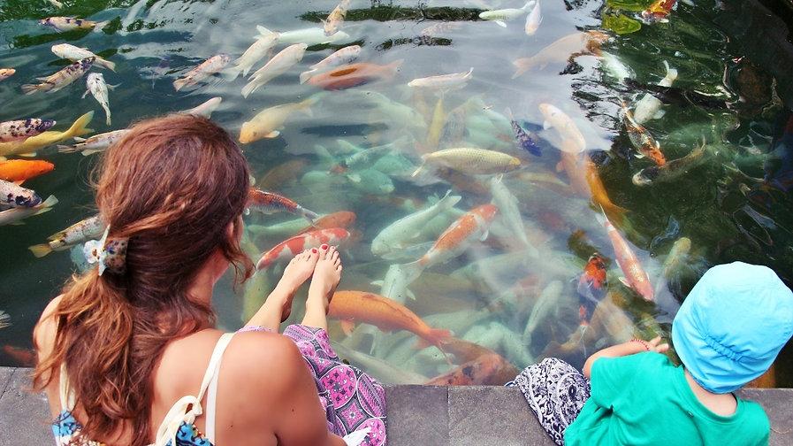 Poissons Temple Bali enfant
