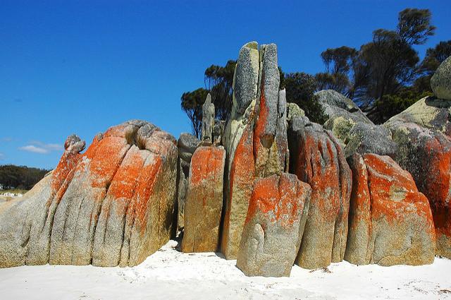 rochers Bay of Fires en Tasmanie